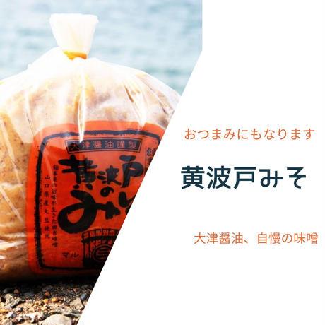 【黄波戸みそ】日置ノ発酵グラノーラ
