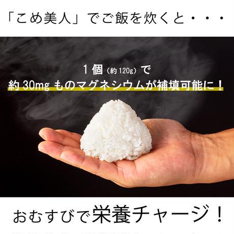 塩職人の塩おむすびキット