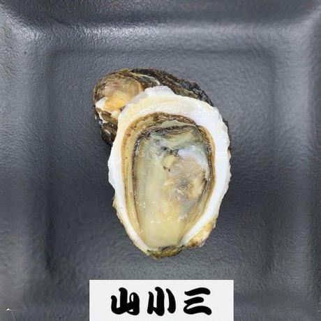 的矢岩牡蠣S(三重)