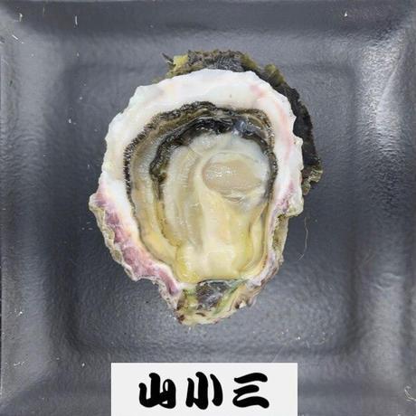 隠岐ひかり(島根)