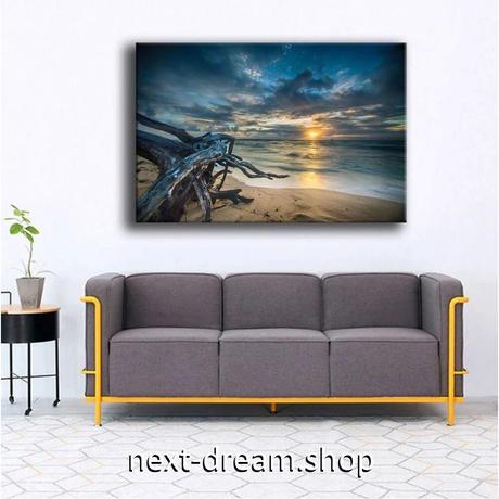 【お洒落な壁掛けアートパネル】 枠付き 40×60cm ライオン ビーチ 海 砂浜 写真 絵画 部屋 インテリア m06324