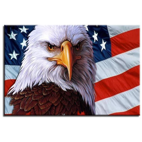 【お洒落な壁掛けアートパネル】 枠付き 40×60cm アメリカ 国旗 USA ハクトウワシ 絵画 部屋 インテリア m06391