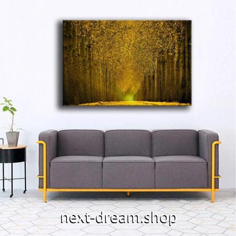 【お洒落な壁掛けアートパネル】 枠付き 40×60cm 黄色 並木道 紅葉 自然 写真 絵画 部屋 インテリア m06326