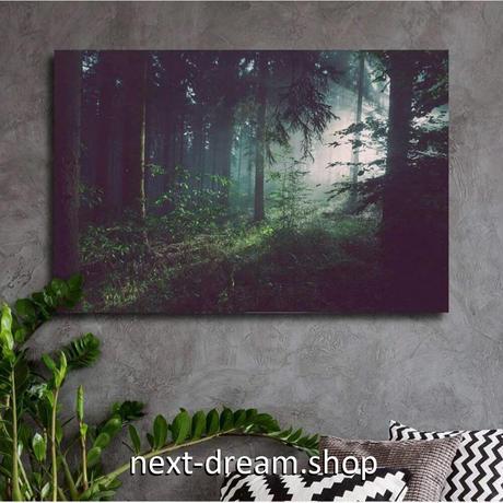 【お洒落な壁掛けアートパネル】 枠付き 40×60cm 朝の森 太陽の光 自然風景 写真 絵画 部屋 インテリア m06317