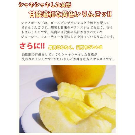 【家庭用】有袋ふじ/シナノゴールド/詰め合わせ 5kg 18玉