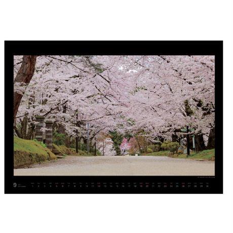 【9月18日販売開始!】カレンダー「幻となった100回目のさくらまつり~それでも桜は咲き誇る~」