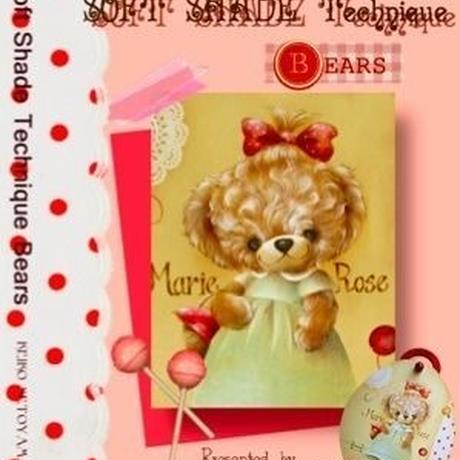 DVD No.004 Soft Shade Painting Vol.3  瀬戸山桂子©