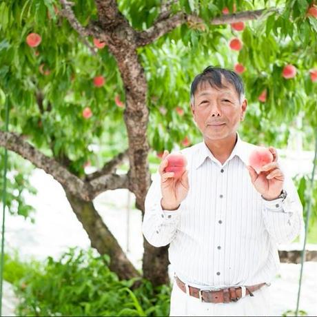 数量限定!フルーツプレミアム定期便2018【送料無料】