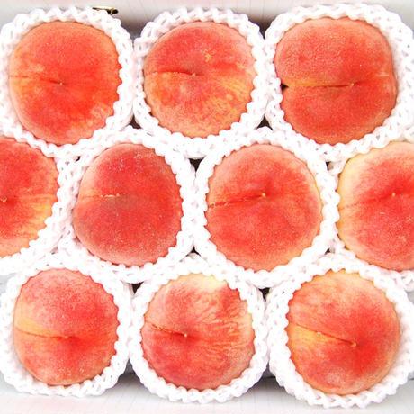 【贈答にぴったり】さくら白桃 3kg(8〜10玉)