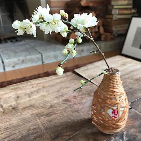 大分竹芸酒瓶   EMPTY GOOD-TASTE SAKE BOTTLES, WEAVED  OITA-BAMBOO WORKS.