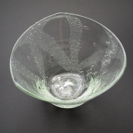 おおやぶみよ_ティンガーラ(天の川)鉢