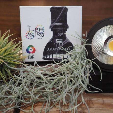 ◆ AMATERAS LED-10W / 太陽光に最も近い植物育成ライト  【アマテラス】