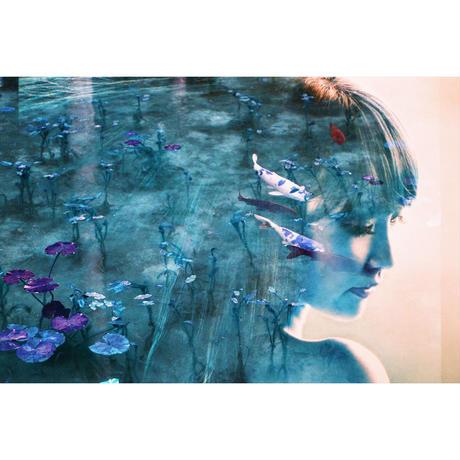 モネの肖像 -portrait of Monet-