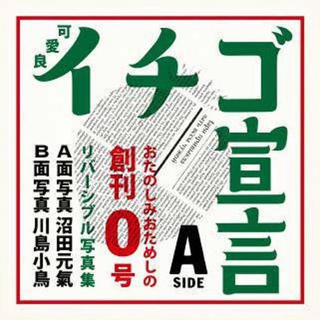 『いちご宣言0号』川島小鳥&沼田元氣