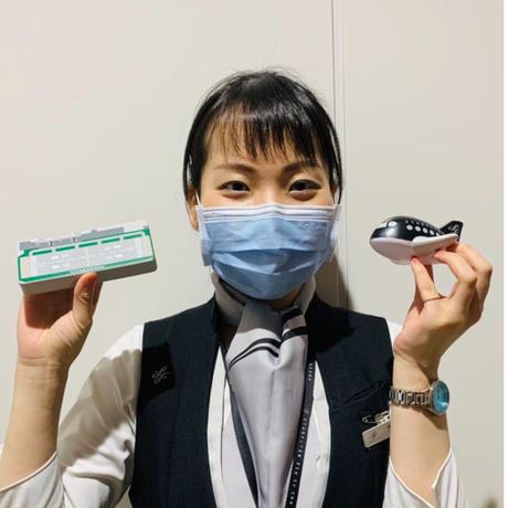 Airplane & Runway Squeeze スクイーズひこうき&ランウェイ