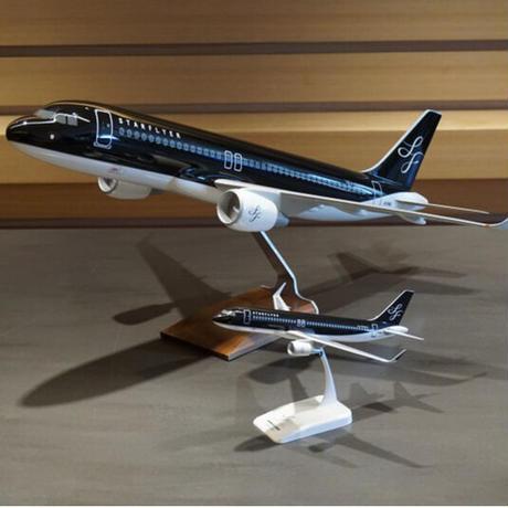 【残り一台】AIRBUS A320  Scale1:50  Model Plane 1/50 モデルプレーン