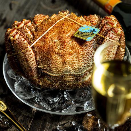 【贈答用にも】カネシメ食品 通販「超特大!毛蟹(1杯)」《送料無料》(※沖縄、離島除く)
