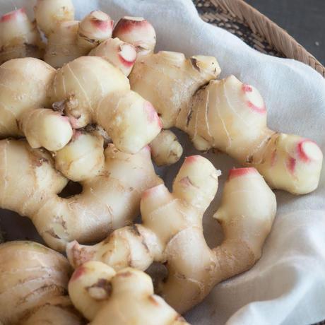 HOMEMAKERS 新生姜 1kg 農薬・化学肥料不使用