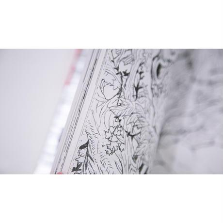 Acky Bright / 【BORDER LINE】イラストブック / Illustration book