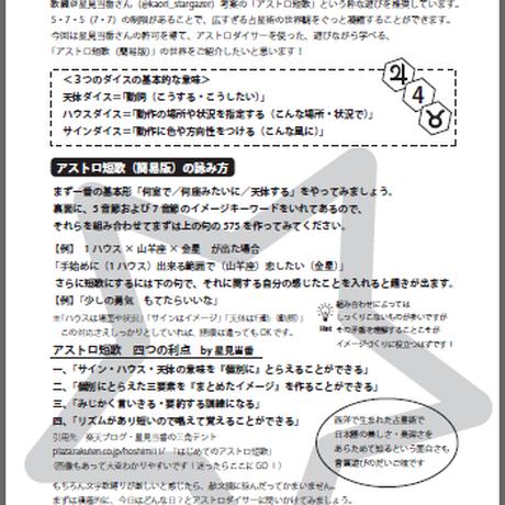 アストロダイサー春分デニム エピソード1 外布:黒×黄