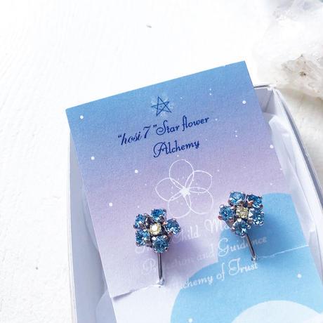 星花の魔法 ベビーブルーアイズ