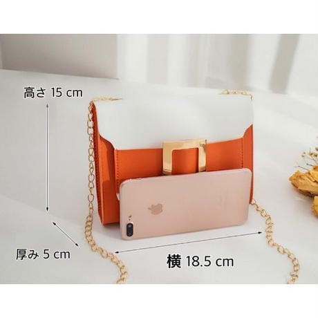 ORANGE♡bi-color golg  belt  bag-11