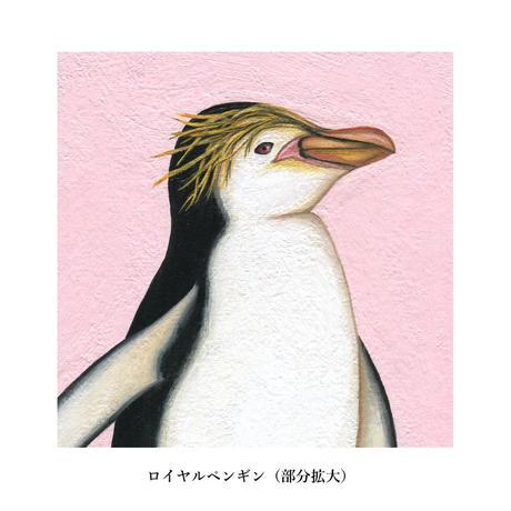 ペンギン原画3種類(マット+額付き)画家:浅羽容子