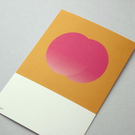 ポストカード/果物