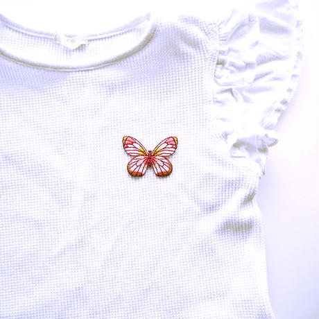 アイロンワッペン【蝶 チョウ Butterfly】アメリカ
