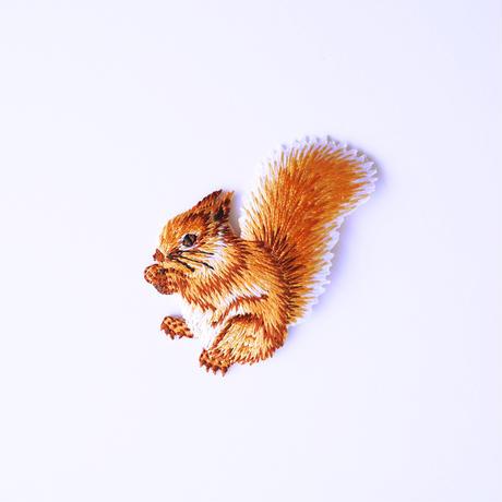 アイロンワッペン【木の実リス Squirrel】アメリカ
