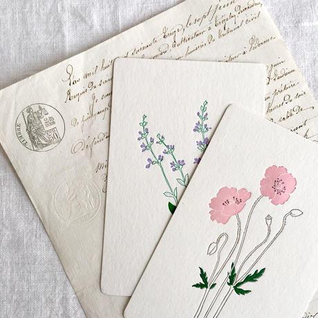 活版印刷で仕上げたポストカード