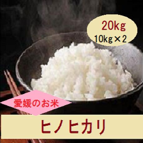 H30 愛媛県産      ヒノヒカリ        白米 20kg