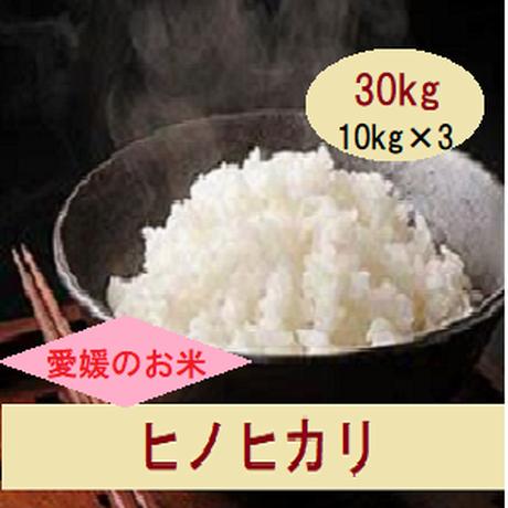 H30 愛媛県産      ヒノヒカリ        白米 30kg