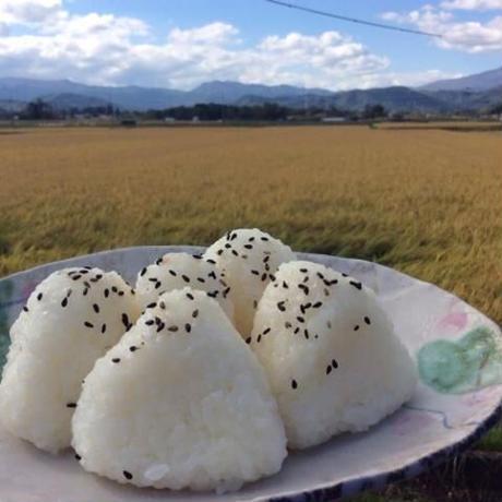【定期品】【こだわり定番】岩手県雫石町「たんたん米 精米5kg」特別栽培:乾式無洗米