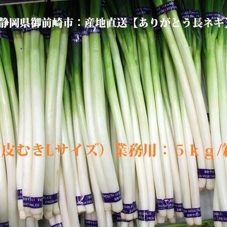 静岡便:産地直送【ありがとう・長ネギ】(皮むきLサイズ)業務用:5kg/箱