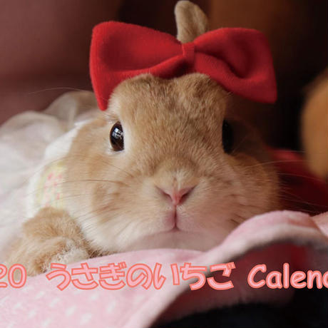 【送料無料】2020年『うさぎいちご』壁掛けカレンダー