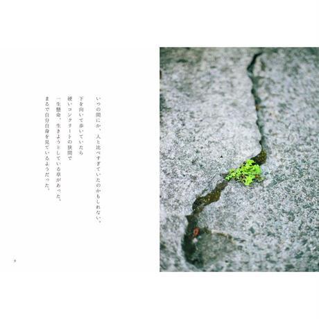 『都会に咲く小さな草花さえも』写真集