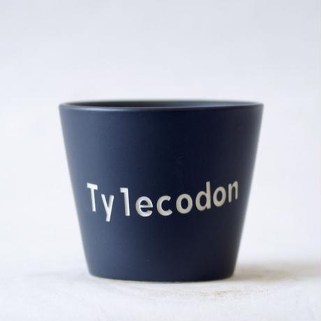 ネームポット 'Tylecodon' M