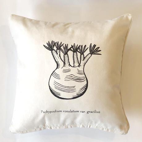 多肉シリーズ クッションカバー Plants cushion cover
