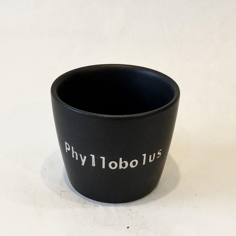 ネームポット 'Phyllobolus' S