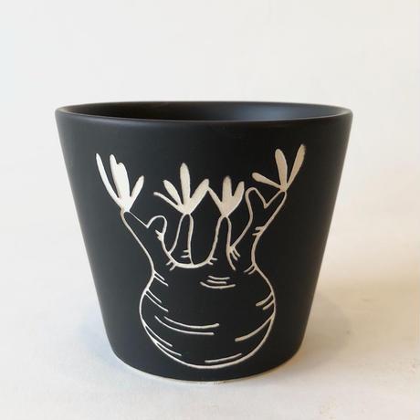 植木鉢 グラキリス M