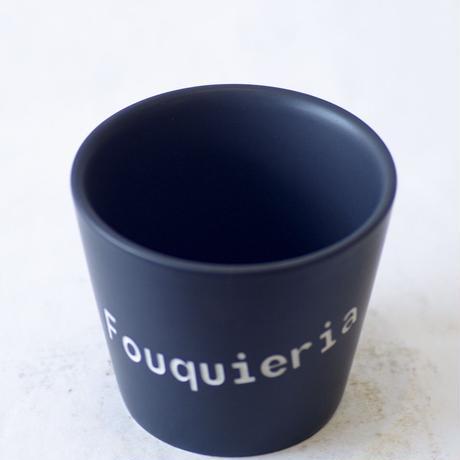 ネームポット 'Fouquieria' M
