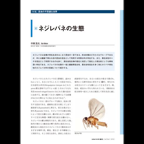 2019年7月発行号/特集/中瀬 悠太 氏