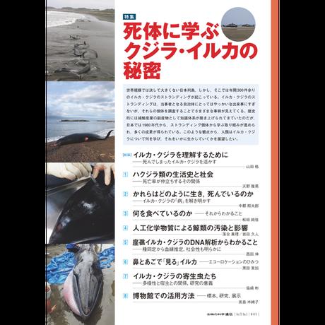 2019年9月発行号/特集/死体に学ぶクジラ・イルカの秘密(9論文)