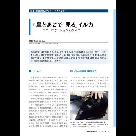 2019年9月発行号/特集/黒田 実加 氏