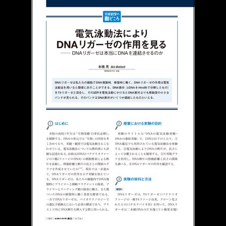 2019年9月発行号/実験観察の勘どころ/本橋 晃 氏