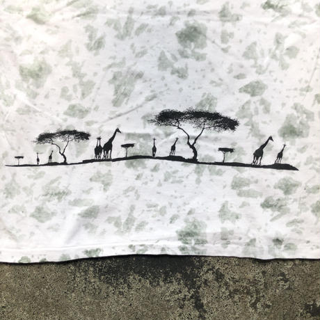 used AFRICA  T