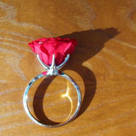 大輪のプリザーブドローズとスワロフスキーのリングアレンジメント【classic red】