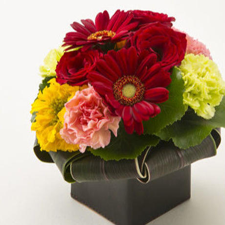 バラとガーベラのボックスアレンジメントM【classical red】/生花