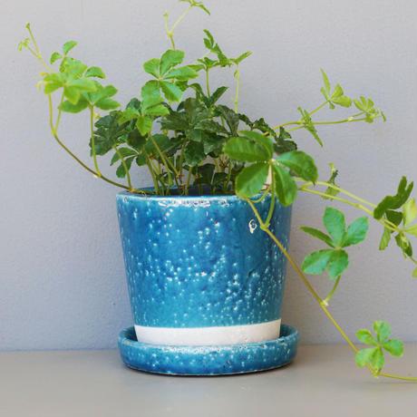 陶器ポット ソーサー付/ミッドナイトブルー